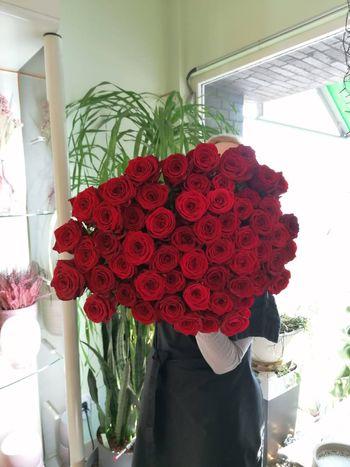 Rote Rosen- Sinnbild der LIEBE