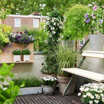 Garten, Balkon, Terrasse