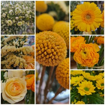 Blumenmix Zuhause