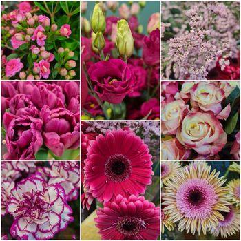 Blumenmix für zuhause