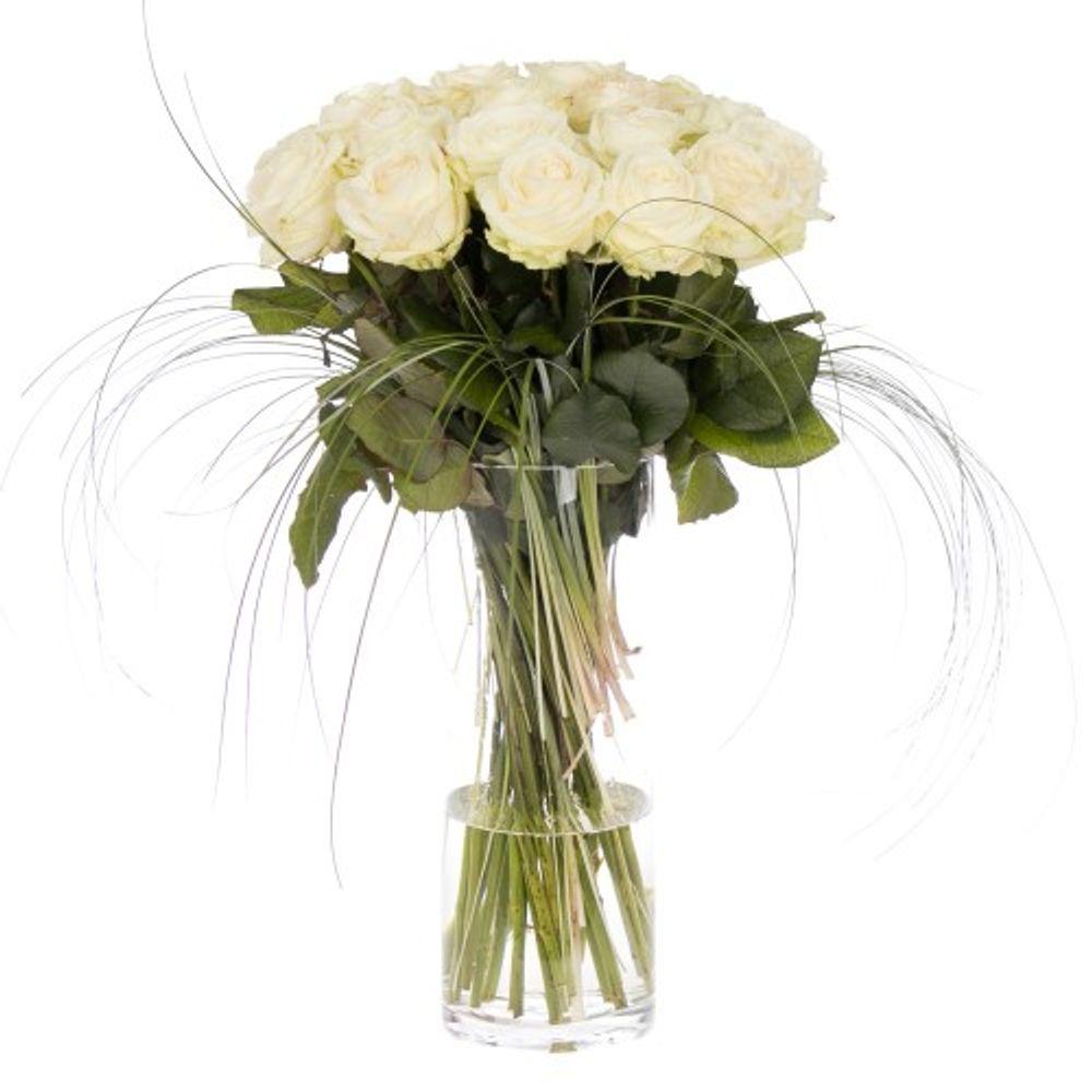 Weiße Rosen - zoom