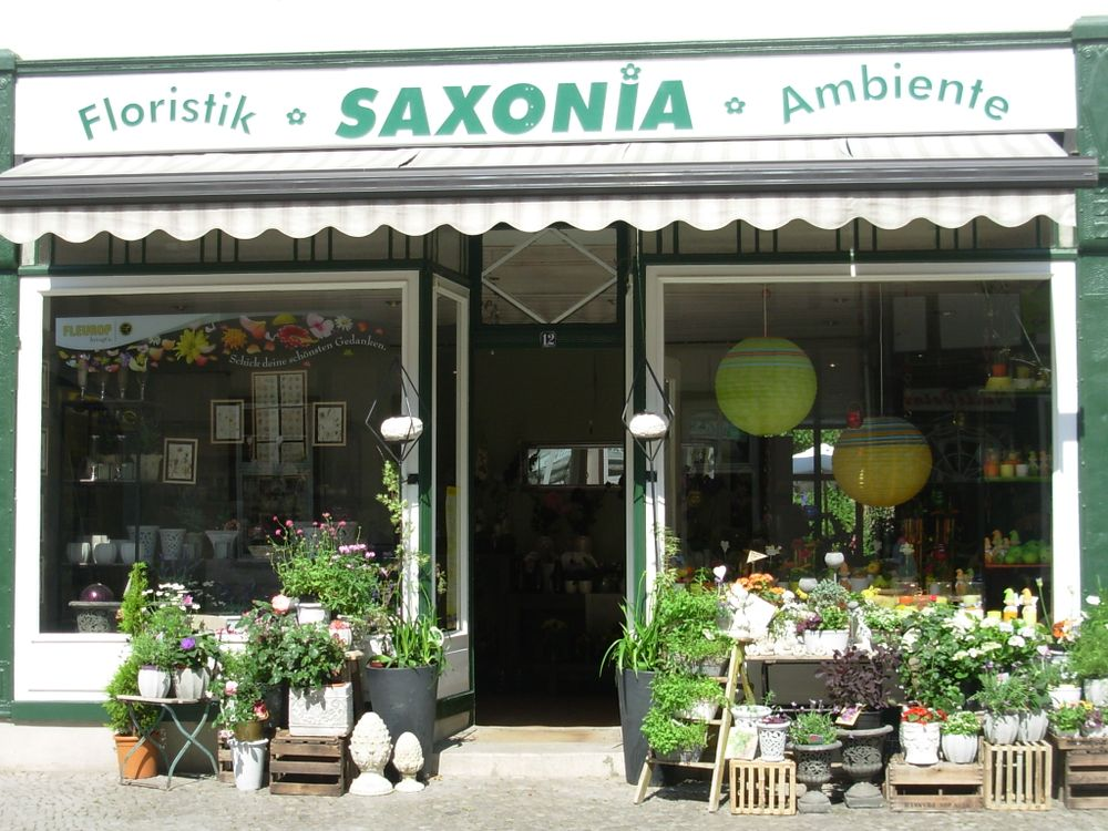 Saxonia Floristik & Ambiente