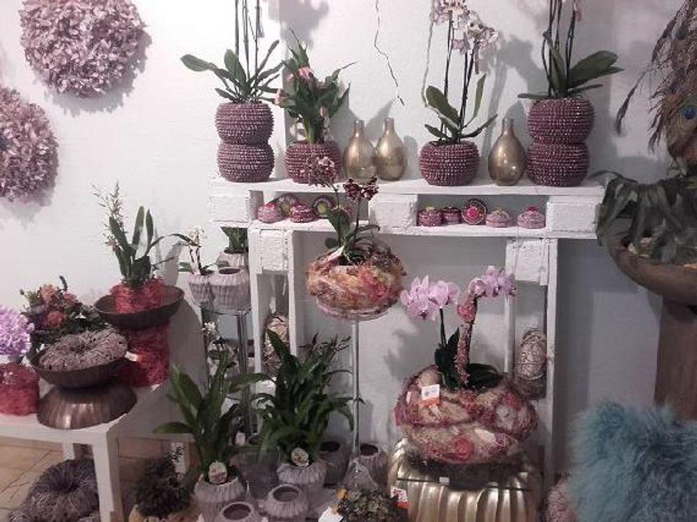 Blumen Roth